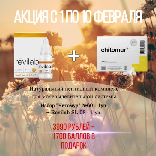 chitomur+revilab